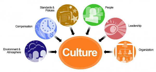 don t accept a job offer until you assess the organizational culture