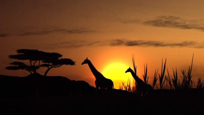 africa_tourism_grows