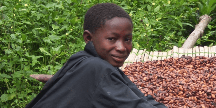 opportunity for young people in cocoa