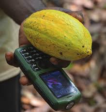 cocoa software, financial inclusion, ghanatalksbusiness.com